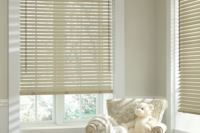 Horizontal Blinds